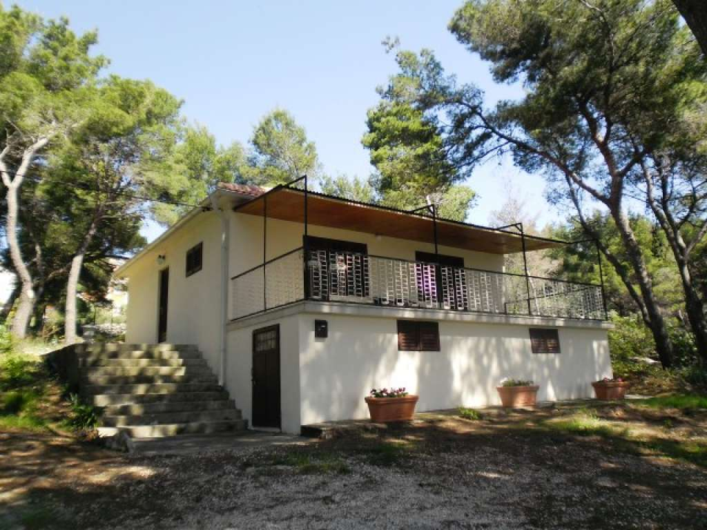 Holiday homes Margita Brač - Selca and Sumartin - Croatia